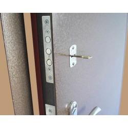 Варианты обработки наружной поверхности металлических входных дверей