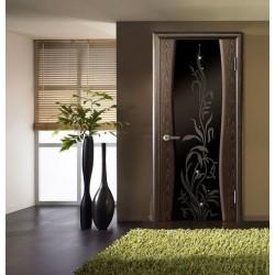 Преимущества и виды дверей со стеклом